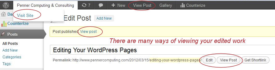 WordPress - Checking your edited work.